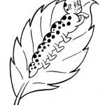 A borboleta vaidosa1 150x150 Atividades sobre VERBO