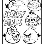 Angry Birds desenhos para colorir
