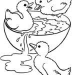 Desenhos de Patinhos para Pintar