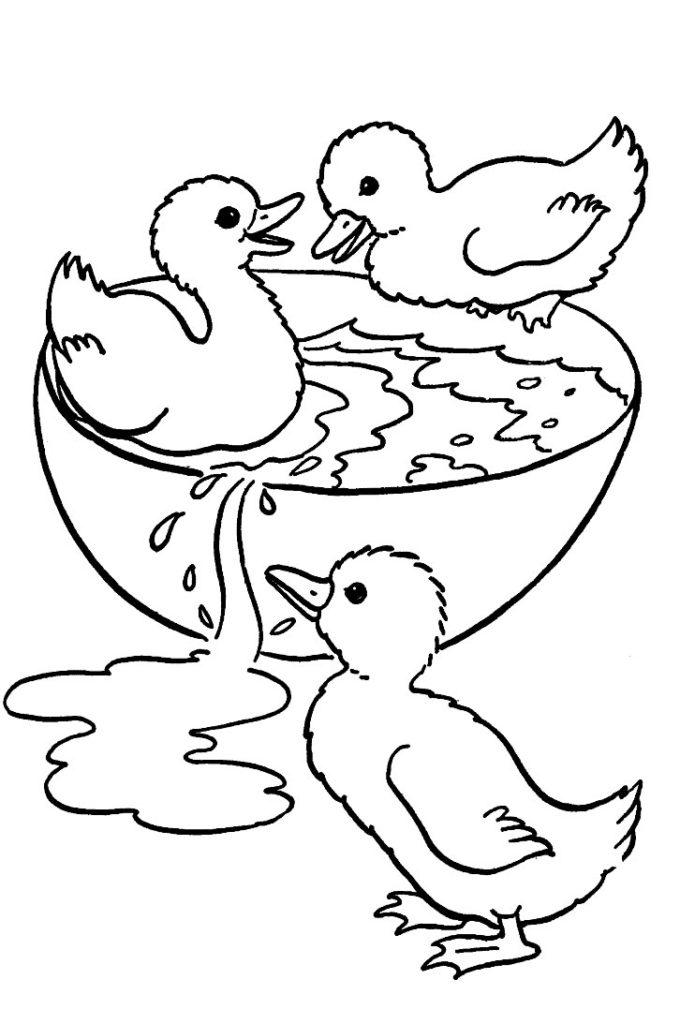 Desenhos De Patinhos Para Pintar Atividades Pedagogicas