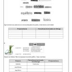 Avaliações de Português prontas para imprimir