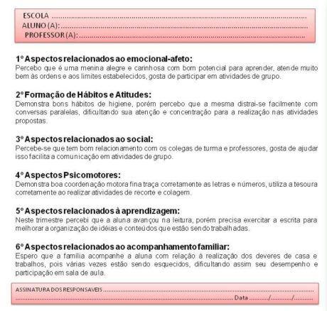 RELATÓRIO INDIVIDUAL DE ALUNO ESPECIAL