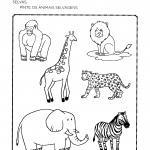 Atividades Sobre Animais para Educação Infantil