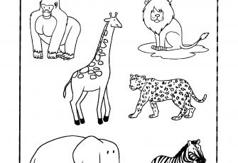 Atividades Sobre Animais Atividades Pedagógicas