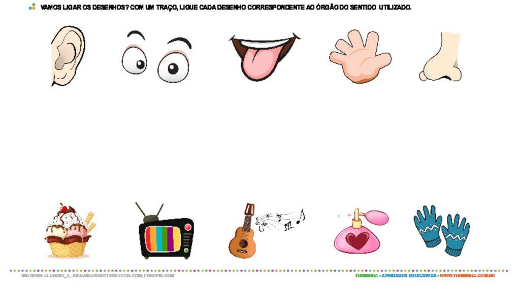 Atividades Sobre Orgaos Dos Sentidos Para Educacao Infantil